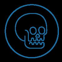 Cranio-sacraal systeem